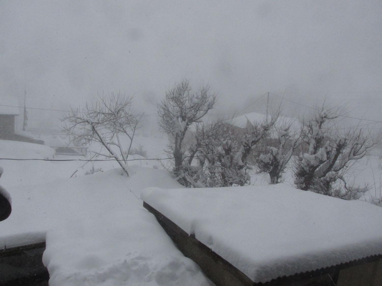 मौसम बदलीले वर्षा र हिमपात