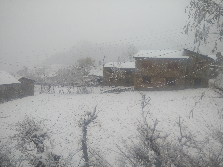 हुम्लामा फेरि हिमपात, हवाई सेवा अवरुद्ध, जनजीवन प्रभावित