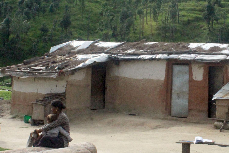 मुक्तहलियाको पीडाः वर्षौँदेखि जङ्गलमा बास