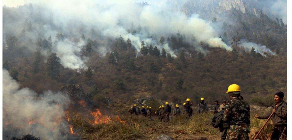 मनाङको जङ्गलमा फेरि बल्यो आगो, स्थानीय चिन्तित
